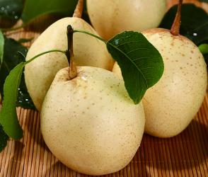 80 pcs New Crop  Hebei Ya Pear China